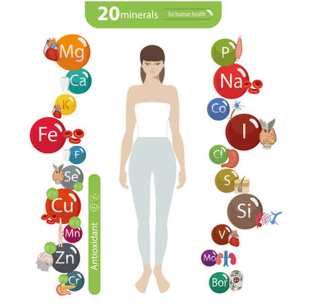 20 minerals: microelements and macro elements and their effect on the health of the organs of the human body. Fundamentals of healthy eating and healthy lifestyles.