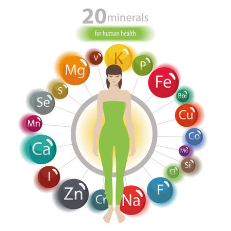 20 minerals: microelements and macro elements, useful for human health. Fundamentals of healthy eating and healthy lifestyles.  イラスト・ベクター素材