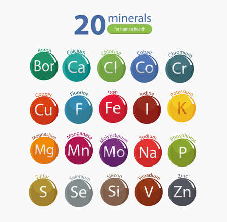 20 minerals: microelements and macro elements, useful for human health. Fundamentals of healthy eating and healthy lifestyles. Stock Illustratie