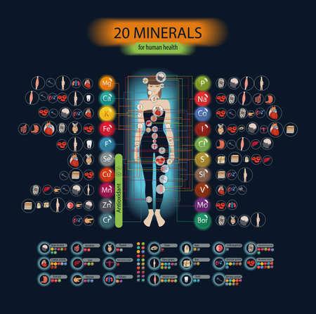 Santé humaine et minéraux. 20 minéraux: micro-éléments et macro-éléments et leurs effets sur la santé des organes du corps humain. Vecteurs