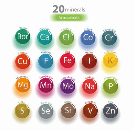 20 minerals: microelements and macro elements, useful for human health. Fundamentals of healthy eating and healthy lifestyles. Çizim
