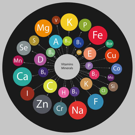 Micro and macro elements and vitamins in a circular scheme. The basis of a healthy diet. Scheme All vitamins and minerals for human health.