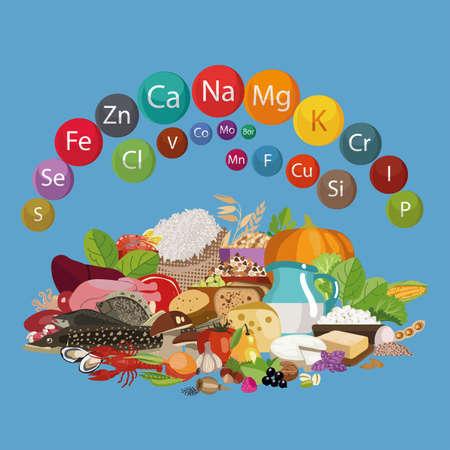 食品中の鉱物。有機食品の組成物。健康的な食生活の基本。  イラスト・ベクター素材