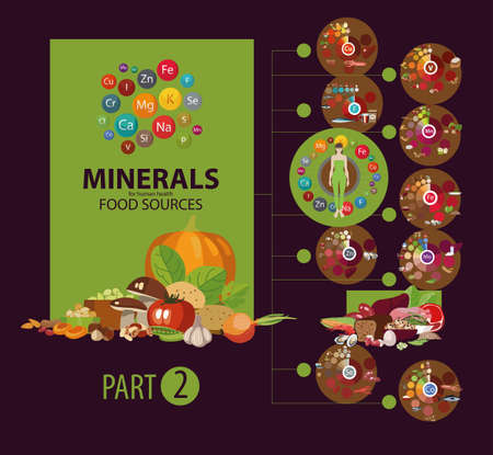 Products with the highest content of micro and macro elements needed for human health. The Basics of Healthy Eating Illustration