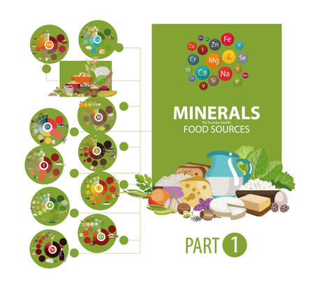 Products with the highest content of micro and macro elements needed for human health. The Basics of Healthy Eating Stock Illustratie