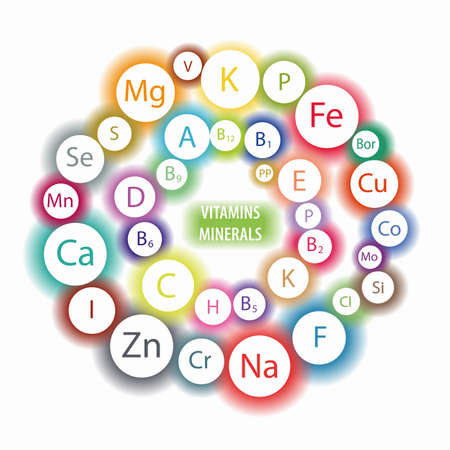 Micro and macro elements and vitamins in a circular scheme. The basis of a healthy diet. All vitamins and minerals for human health