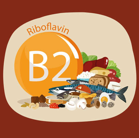 Vitamin B2 (riboflavin). Food sources. Natural organic products with the maximum vitamin content.