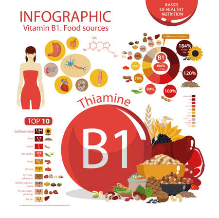 Vitamin B1 (thiamine). Food sources. Infographics: top 10 natural organic products with the maximum vitamin content. Illustration