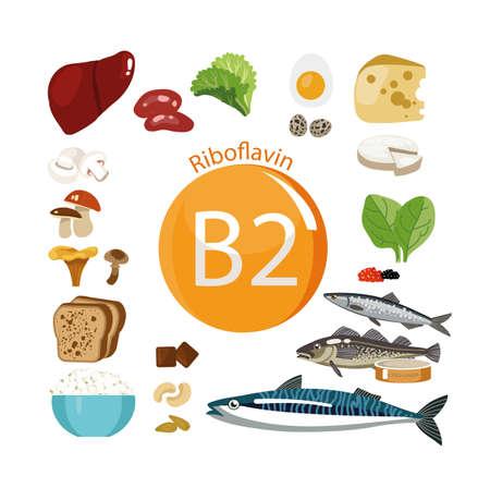 ビタミンB2(リボフラビン)。食料源ビタミン含有量を最大限に高い天然有機製品。  イラスト・ベクター素材