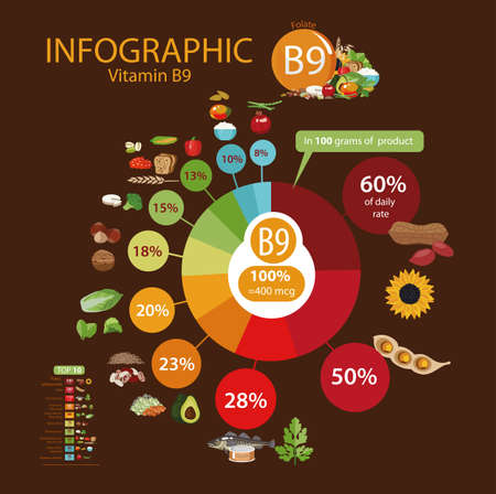 Vitamin B9 (folate). Food sources. Natural organic products with the maximum vitamin content. Ilustração