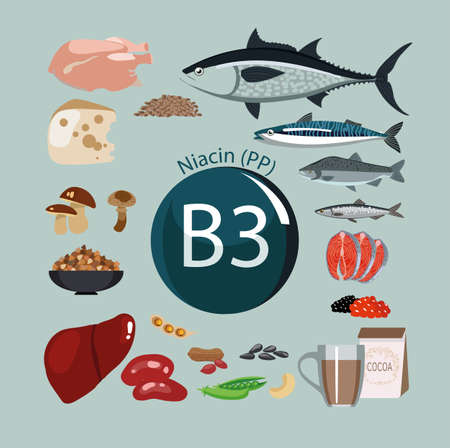 Vitamin B3 (PP). Foods with the maximum vitamin content. Basics of dietary nutrition Vectores