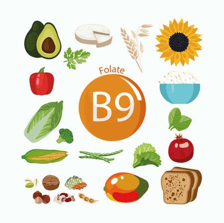 Vitamine B9 (folaat). Voedselbronnen. Natuurlijke biologische producten met het maximale vitaminegehalte.