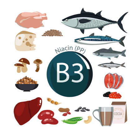 Vitamine B3 (PP). Voedingsmiddelen met het maximale vitaminegehalte. Basisprincipes van dieetvoeding Stock Illustratie