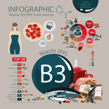 Vitamin B3 (PP). Infographics: the effect of vitamin on human health, the daily rate, the top 10 products. Foods with the maximum vitamin content. Basics of dietary nutrition Vectores
