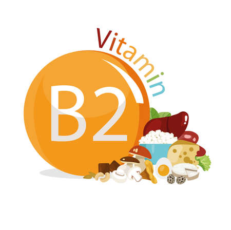 Vitamin B2 Natural organic products with the maximum content of vitamin B2.