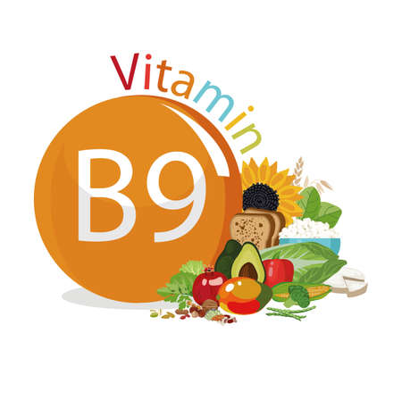 Vitamin B9 Food sources. Natural organic products with the maximum vitamin content. Reklamní fotografie - 94678922