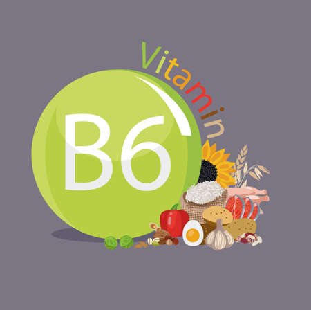 Vitamin B6 Food sources. Natural organic products with the maximum content of vitamin B6. Stock Illustratie
