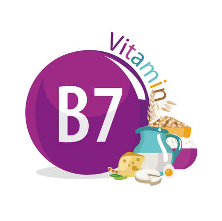 Vitamin B7 (vitamin H, biotin) food sources. Natural organic products with a maximum content of vitamin 7. Vettoriali