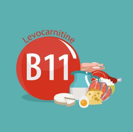 Vitamin B11 (Levocarnitine). Natural organic products (dairy products, fish, meat) with the highest content of vitamin B11.