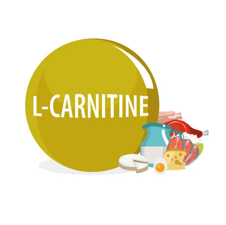 Levokarnitin (Vitamin B11, L-carnitine). Natural organic products (dairy products, fish, meat) with the highest content of L-carnitine.