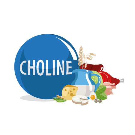 Choline (Vitamin B4). Food sources. Natural organic products with the highest content of vitamin B4. Ilustração