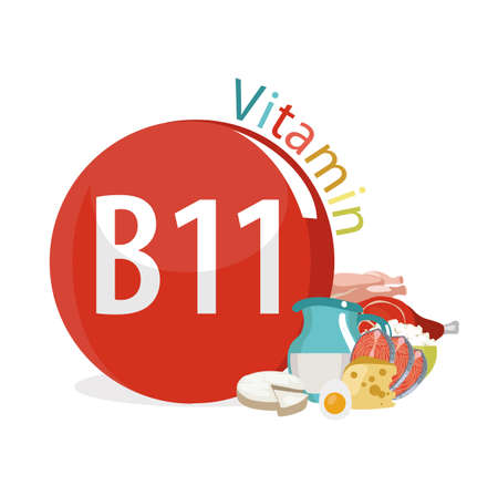 Vitamin B11 (Levocarnitine). Natural organic products (dairy products, fish, meat) with the highest content of vitamin B11. white