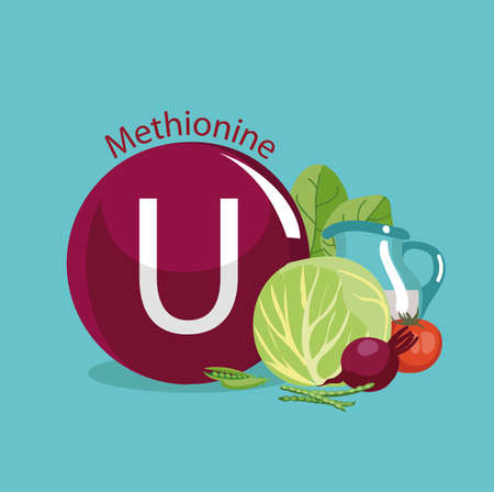 Vitamin U (methionine). Natural organic products (fruits, greens, foods) with the highest content of vitamin U. Ilustrace