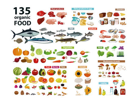 135 organic products. Natural food (meat products, vegetables, fruits, dairy products) in a set with categories. Isolate on white background. Vector illustration. Illustration