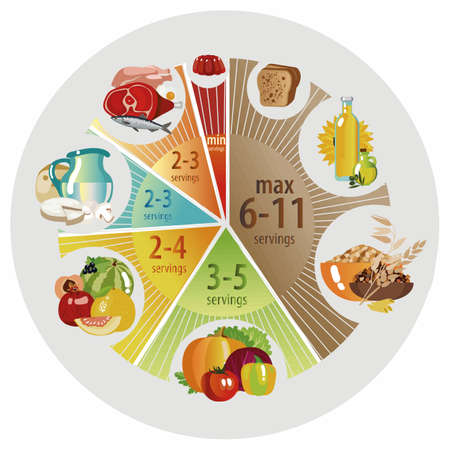 Food pyramid in the form of a pie chart. Recommendation for a healthy diet. Norms of products for the daily diet. Vector illustration.