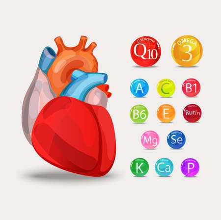 Healthy heart Vitamins and minerals. Magnesium, potassium, omega-3, coenzyme Q10 and others. Stock Vector - 98464008