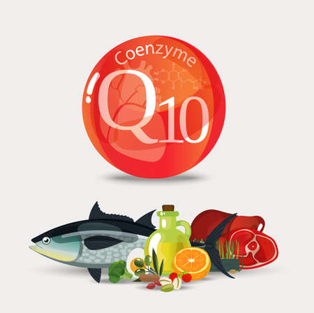 Coenzyme q10. Healthy food. Natural organic products with a high content of coenzyme q10 vector illustration