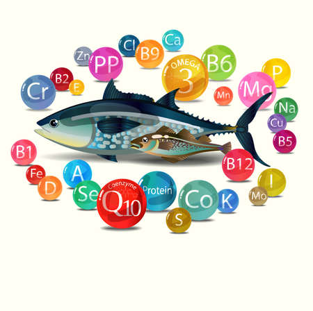 Natural organic food is fish. Basic Vitamins, minerals and microelements found in fish. Light background Vector illustration. Stock Illustratie