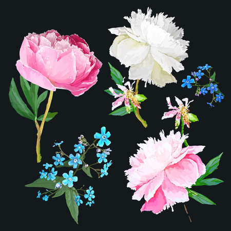 Peonies, forget-me-nots. Scenic image of flowers in vector. Иллюстрация
