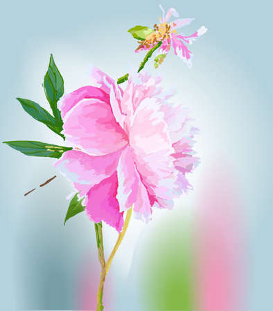 Peonies. Scenic image of flowers in vector. Иллюстрация