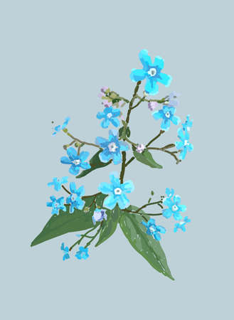 Forget-me-nots. Scenic image in vector. Hand drawing