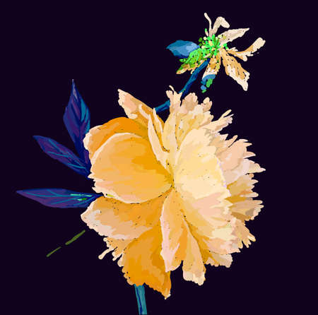 A picturesque peony flower. Seasonal flower. Inflorescence and leaves. Hand drawing in a vector format. Фото со стока - 129767265