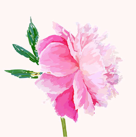 A picturesque peony flower. Seasonal flower. Inflorescence and leaves. Hand drawing in a vector format. Фото со стока - 129767282
