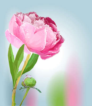 Peonies. Scenic image of flowers in vector. Фото со стока - 129767289
