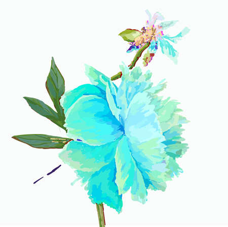 A picturesque peony flower. Seasonal flower. Inflorescence and leaves. Hand drawing in a vector format. Фото со стока - 129767330