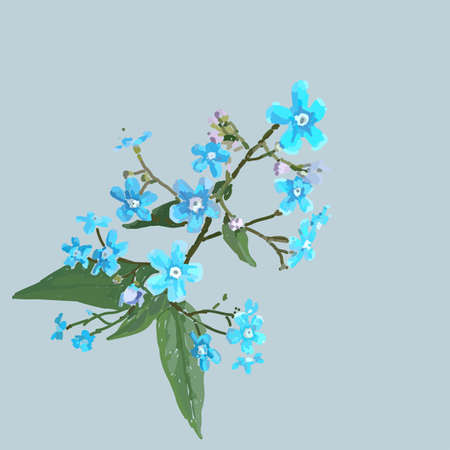 forget-me-nots. Scenic image of flowers in vector.
