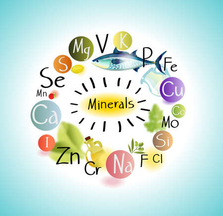 All minerals for health benefits. List of minerals and food Фото со стока - 125360656