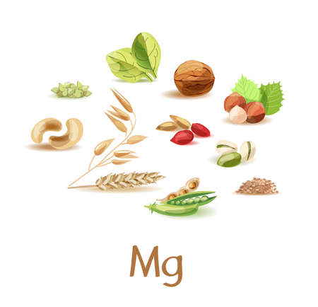 Magnesium-containing products. A set of products of plant origin with a high content of trace elements magnesium.