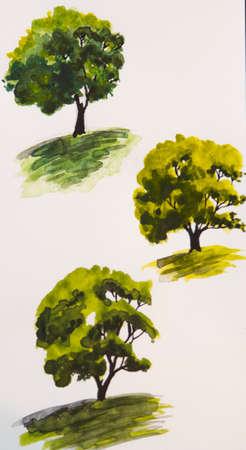 coma: Green trees hand drawn watercolor illustration Stock Photo