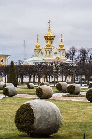 specificity: Church and Park Museum-Reserve Peterhof in winter