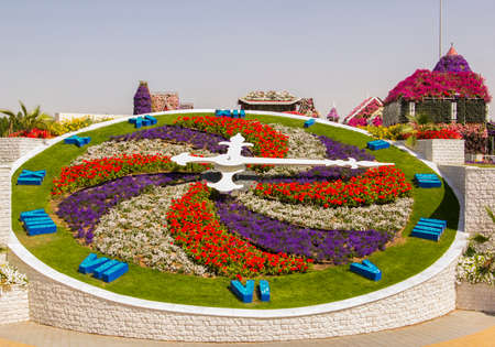 bright floral clock in the Miracle Garden in Dubai