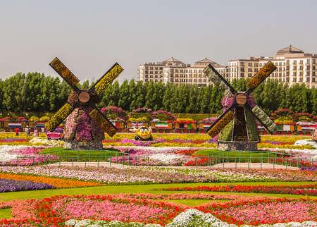 奇跡の庭の花のフィールドに 2 つの花工場