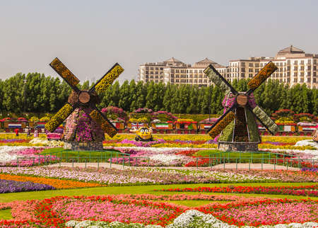 two flower mills on the field of flowers in the Miracle Garden