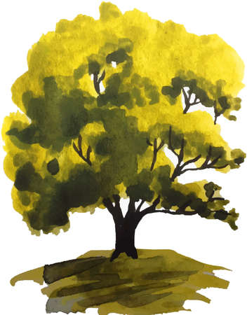 watercolor illustration of a green oak tree on the hill