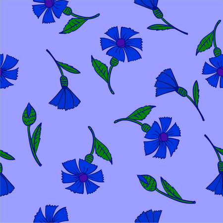 pattern blue cornflowers on a blue background vector illustration Vector