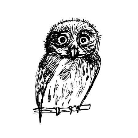 black ink: graphic sketch bird owl in black ink vector illustration